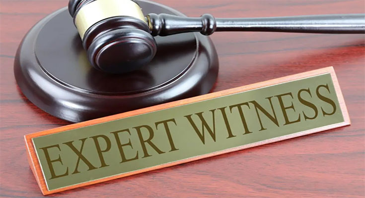 What You Should Know About Working With Expert Witnesses
